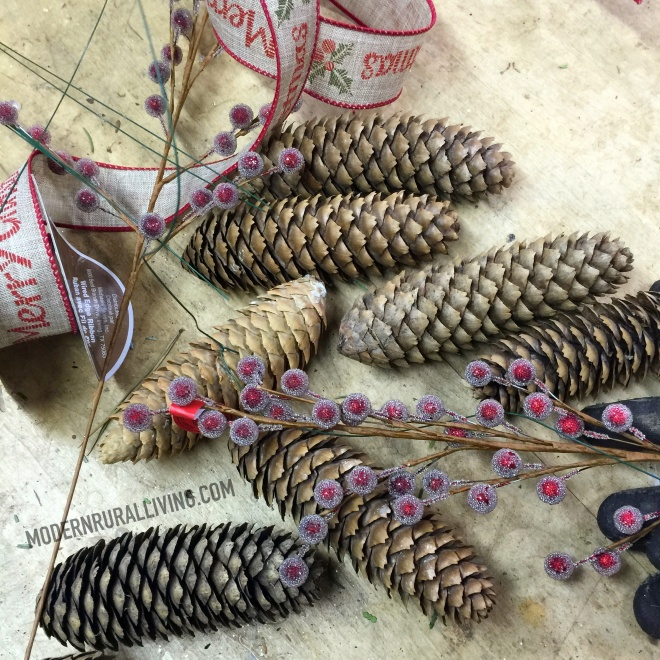 PineCone_Accessories